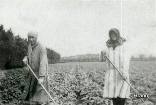 Lugning ved sydvestpynten, Ebba Christensen og Helene Køster